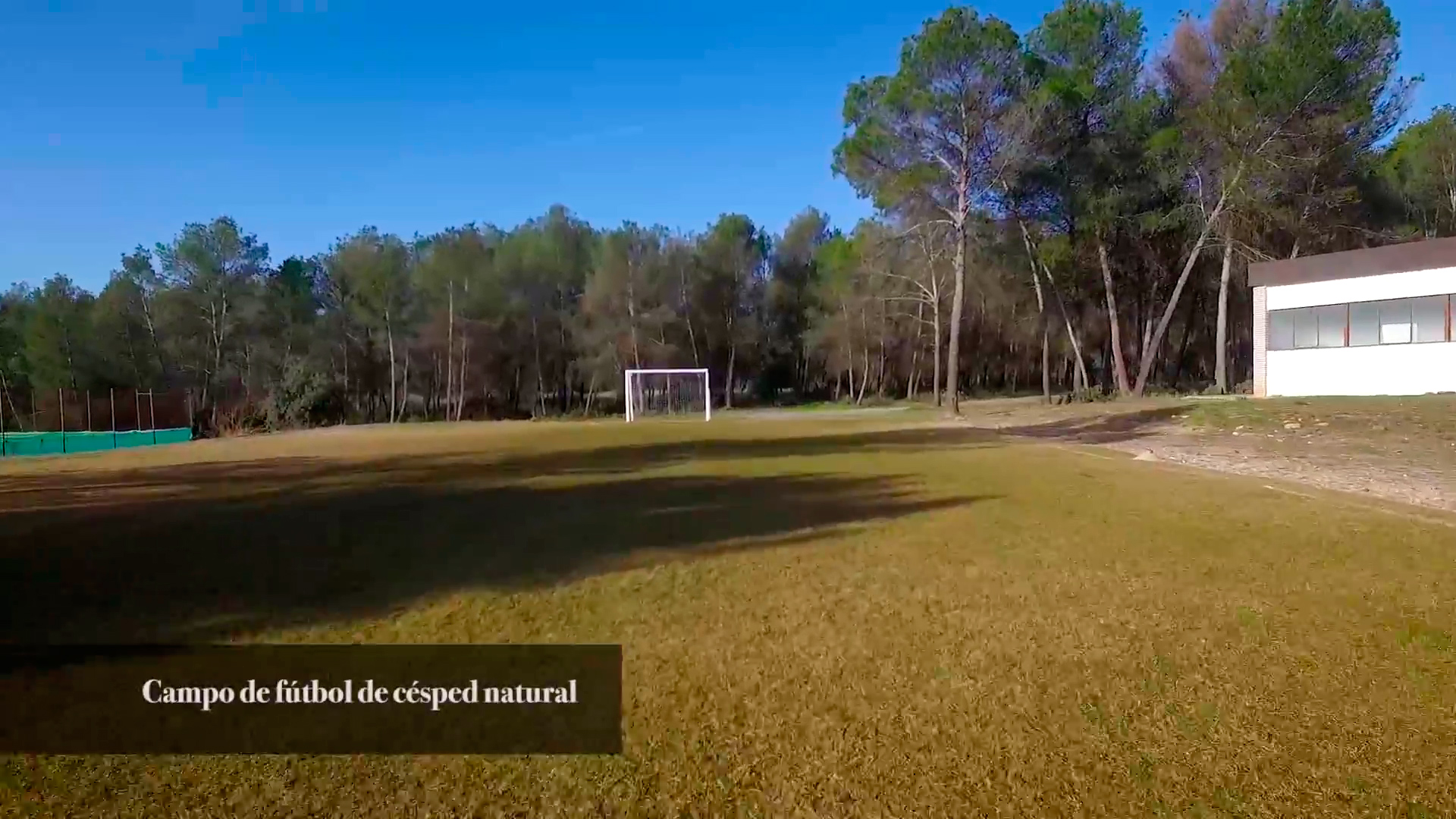 Actividades deportivas Real Sociedad de Tiro de Pichón de Granada