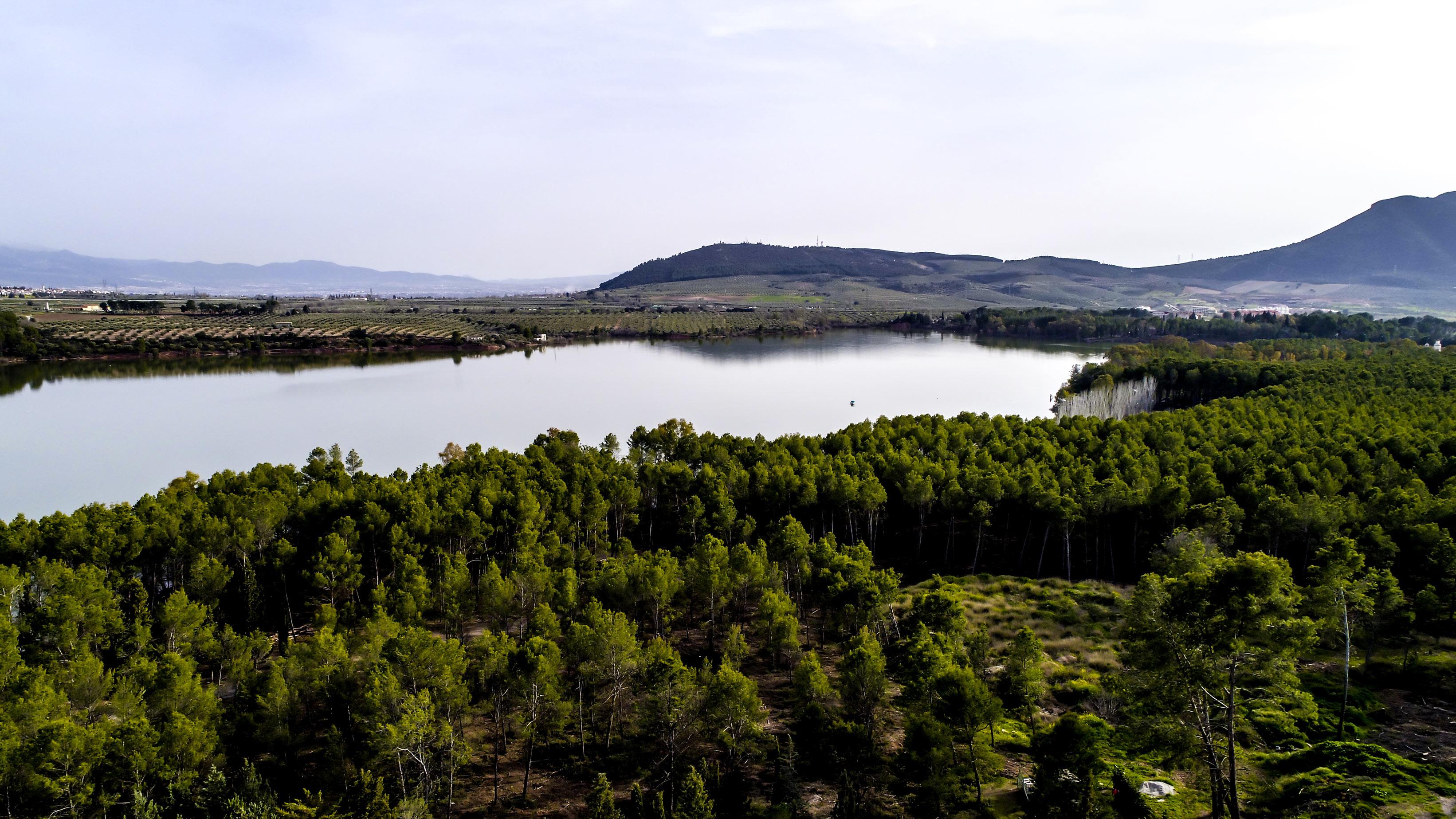 Entorno del Parque del Cubillas de la Real Sociedad de Tiro de Pichón de Granada